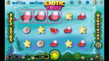 exotic fruit screenshot (3)