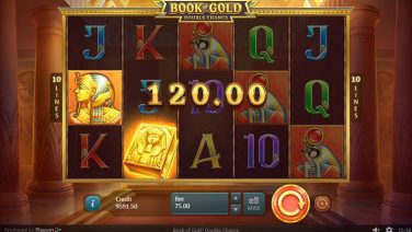 Book of Gold Double Chance screenshot (1)