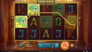 Book of Gold Double Chance screenshot (3)