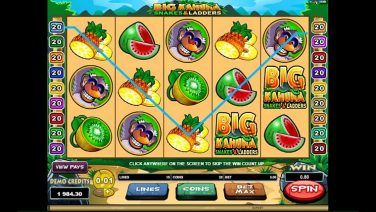 Big Kahuna Snakes and Ladders screenshot (1)