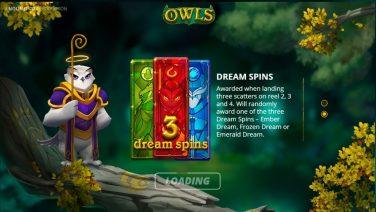 owls 1 (1)