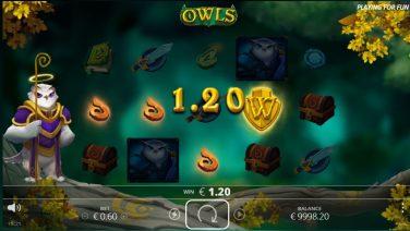 owls 2 (1)