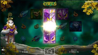 owls 3 (1)