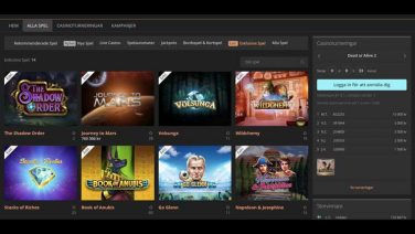 storspelare casino screenshot (4)